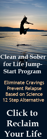 Clean and Sober for Life Program